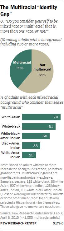 "The Multiracial ""Identity Gap"""