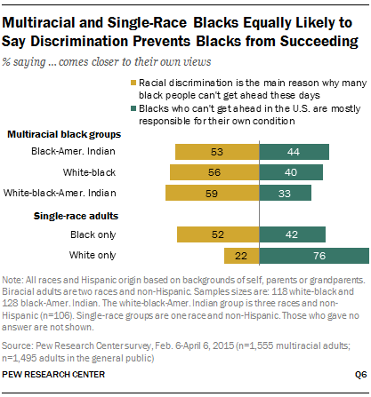 Multiracial and Single-Race Blacks Equally Likely to Say Discrimination Prevents Blacks from Succeeding