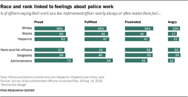 Race and rank linked to feelings about police work
