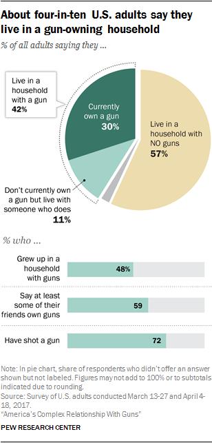 what is gun control